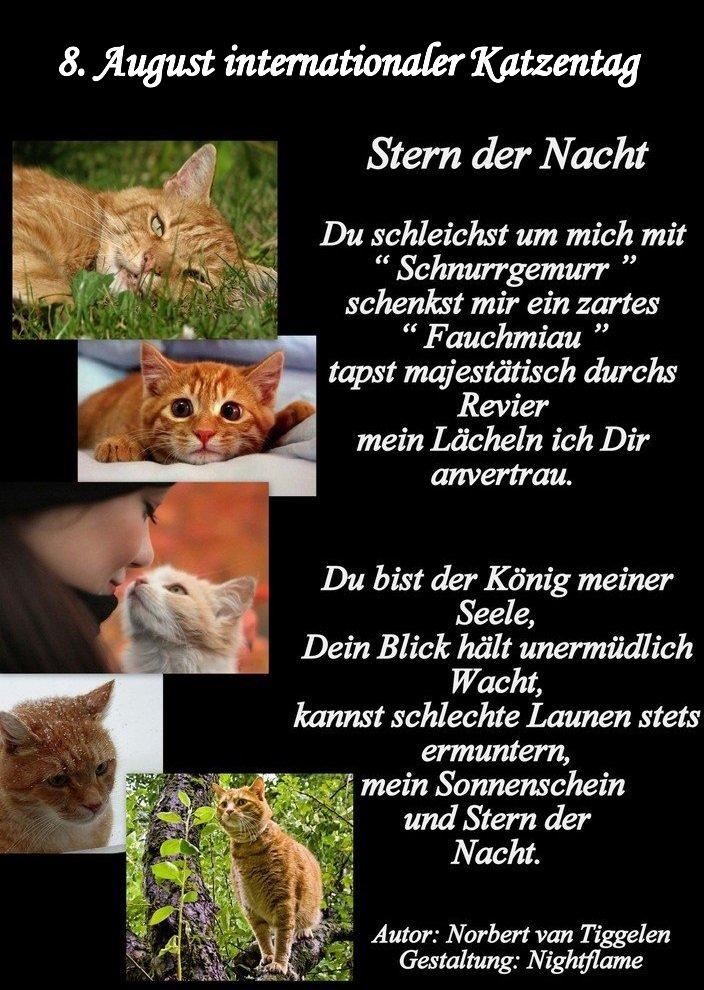 An den Beitrag angehängtes Bild: http://img24.dreamies.de/img/116/b/mbubyyjgfg2.jpg