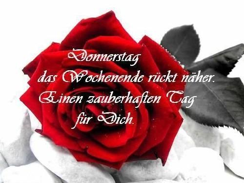 Traumfrau guten morgen andysgedanken: Guten