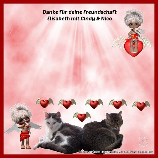 An den Beitrag angehängtes Bild: http://img24.dreamies.de/img/312/b/ehxaa3dgpgt.jpg