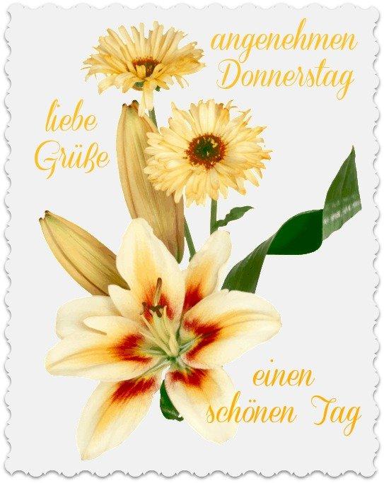 An den Beitrag angehängtes Bild: http://img24.dreamies.de/img/479/b/bfstq280gqn.jpg