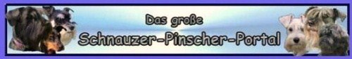 Schnauzer-Pinscher-Portal