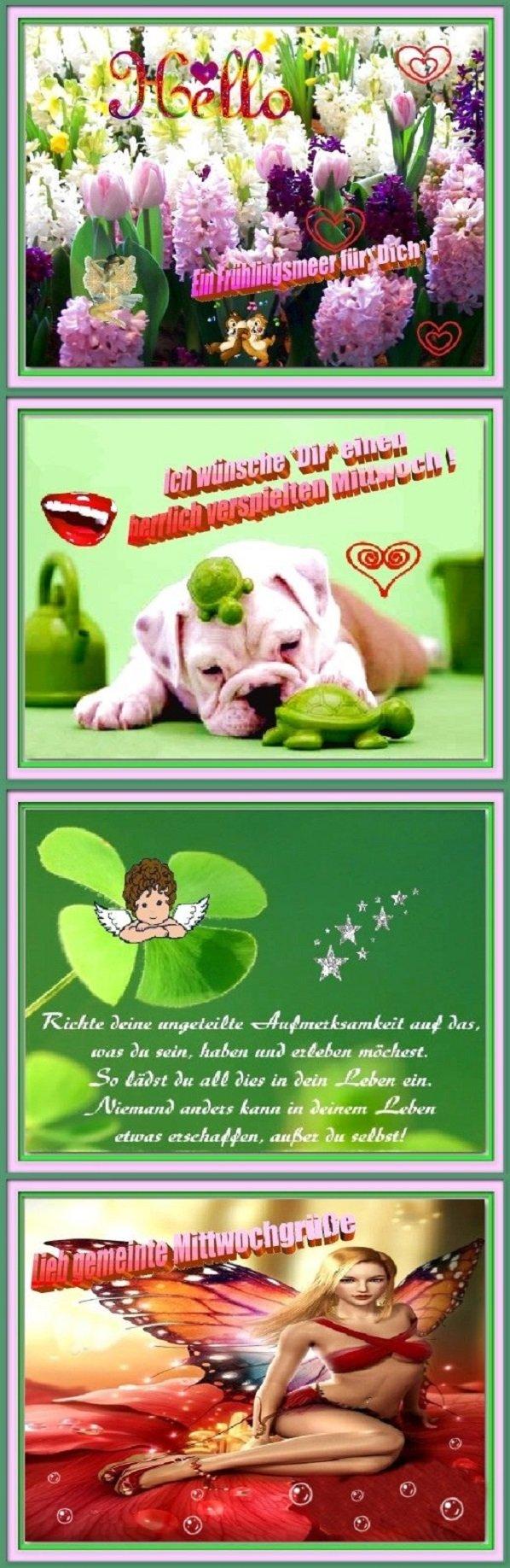 An den Beitrag angehängtes Bild: http://img24.dreamies.de/img/664/b/wqevhhlic42.jpg