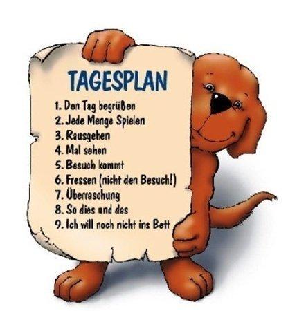 Motivation - Morgenlatte lustig ...